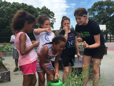 Farm Fresh RI Farm to School Gardening with Boys & Girls Clubs of Providence