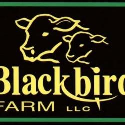 Blackbird Farm