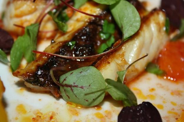 Roasted Mackerel, Blood Orange, Beets