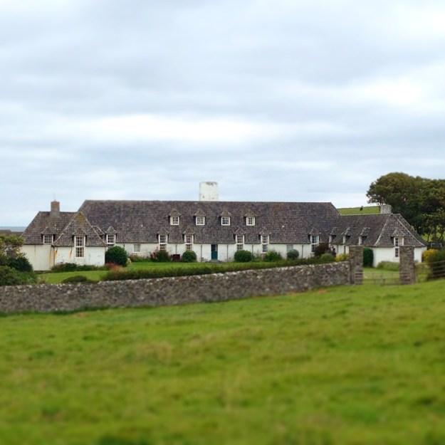 Foraging on Lambay Island - Lambay Castle