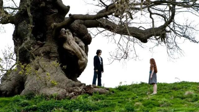 Severus e Lily linguaggio fiori articolo