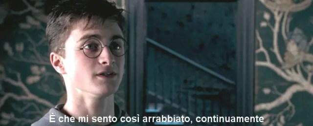 Scamander, Harry arrabbiato
