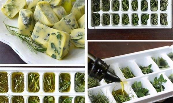 freeze-herbs-600X400