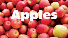 apples-600x475
