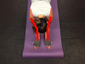 plank-good-from-top-shoulder-lines