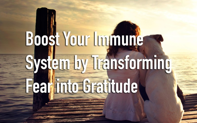 Boost Your Immune System by Transforming Fear into Gratitude