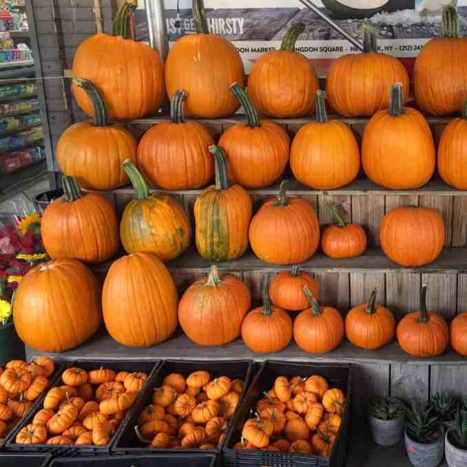 West Village Halloween EAT-FLY-DRESS by Yuliah Vine
