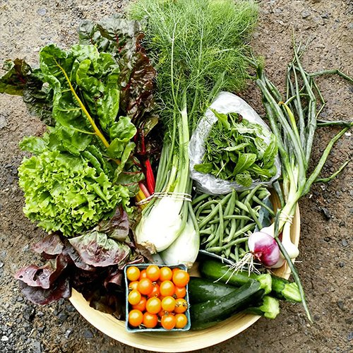 Mother's Day Gift - Organic Vegetable  Basket