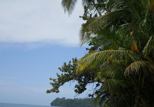 Costa Rica · Zona Caribe: Puerto Viejo de Talamanca y Cahuita