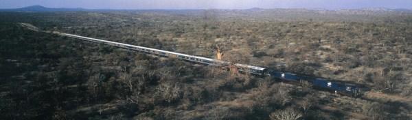 Blue_Train_in_Karoo.sized