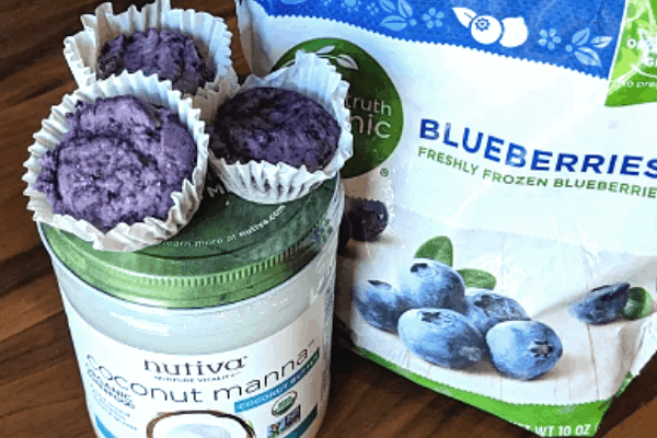 2 ingredient blueberry fat bombs