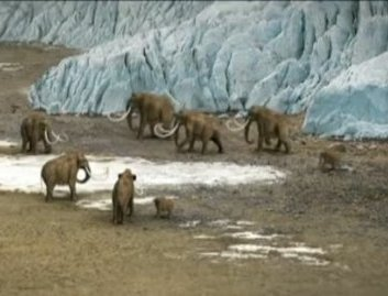 ANTARCTICA PHOTO MAMMOTHS AT ICE CAPONLAND