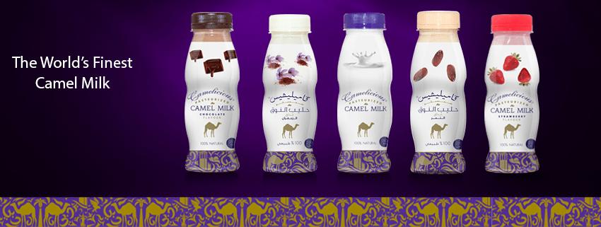 Já pensou consumir produtos feitos de leite de camelo?