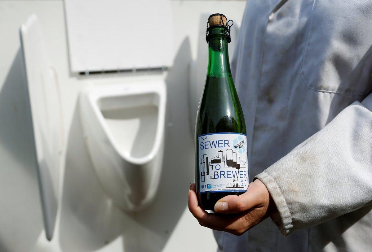 urine beer 4