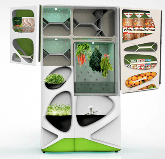 High tech or ecological: what will be your fridge?