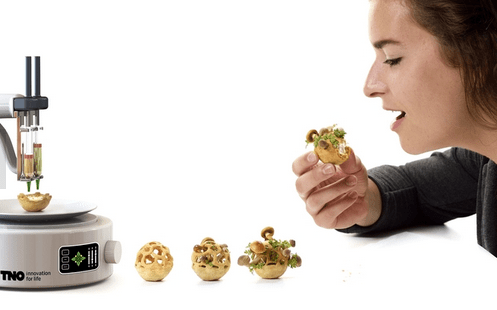 Mushrooms: infinite source of innovation