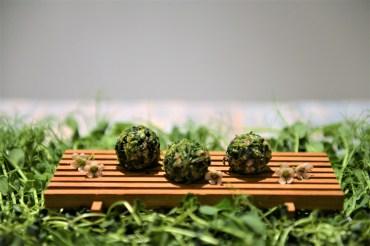 Microgreens-Bündnerfleisch Balls