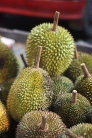 Durian o'clock at the market in Brunei