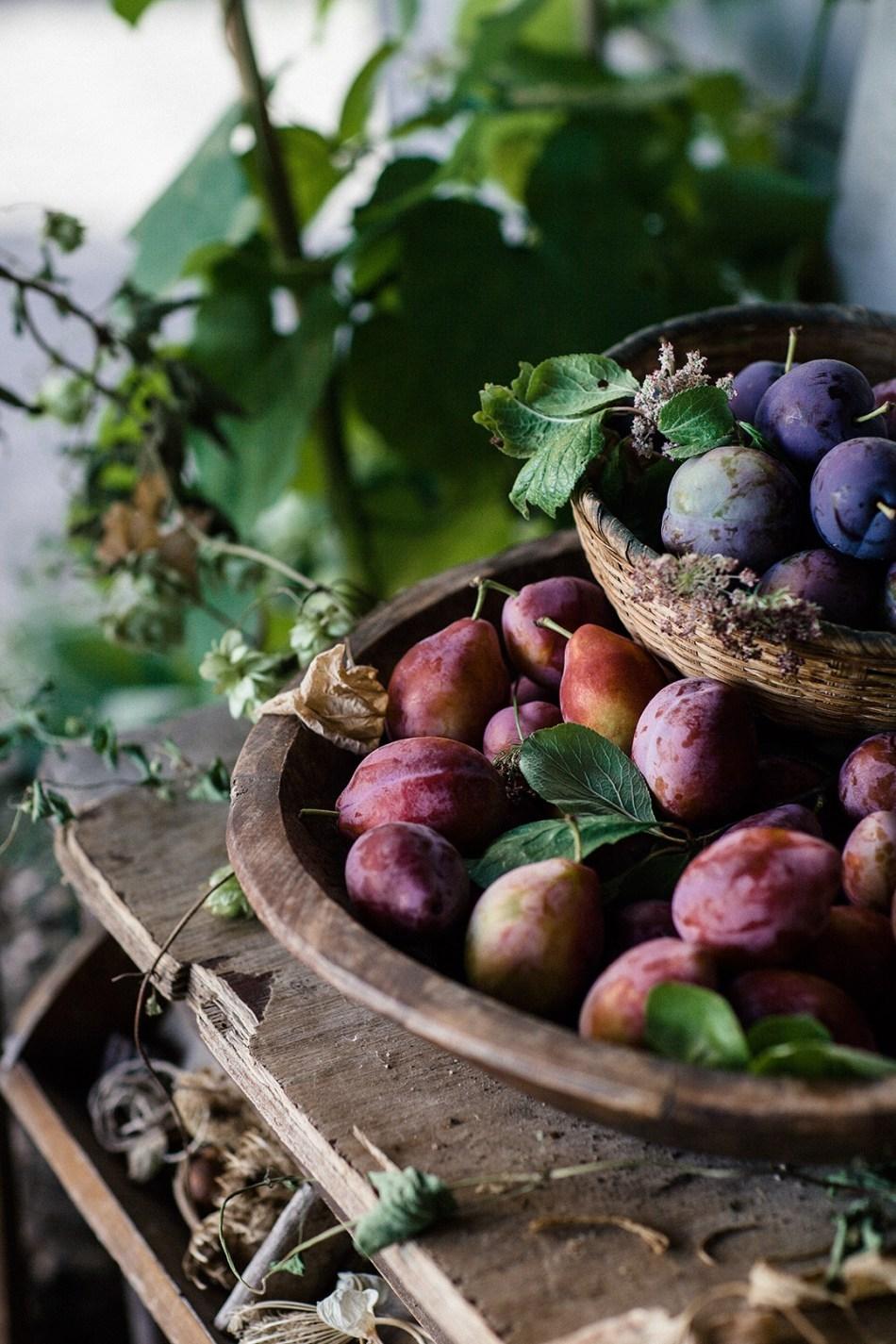 _mg_1331_my garden plums