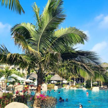 Sofitel Dubai the Palm Reosrt