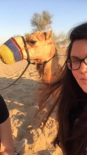 Try to get a selfie with a camel