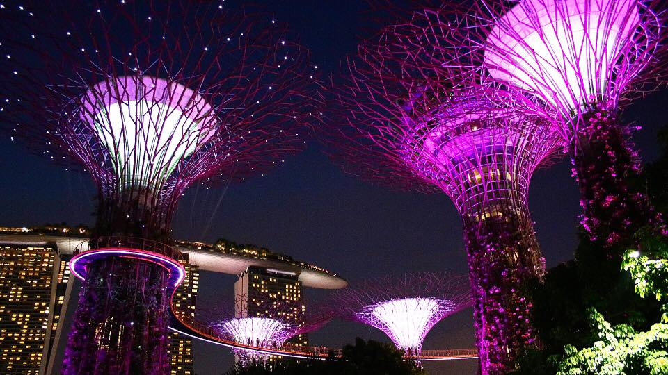Gardens by the Bay – Singapore
