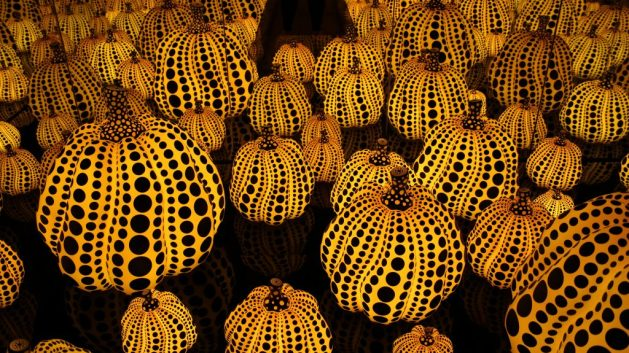 All the Eternal Love I have for the Pumpkins