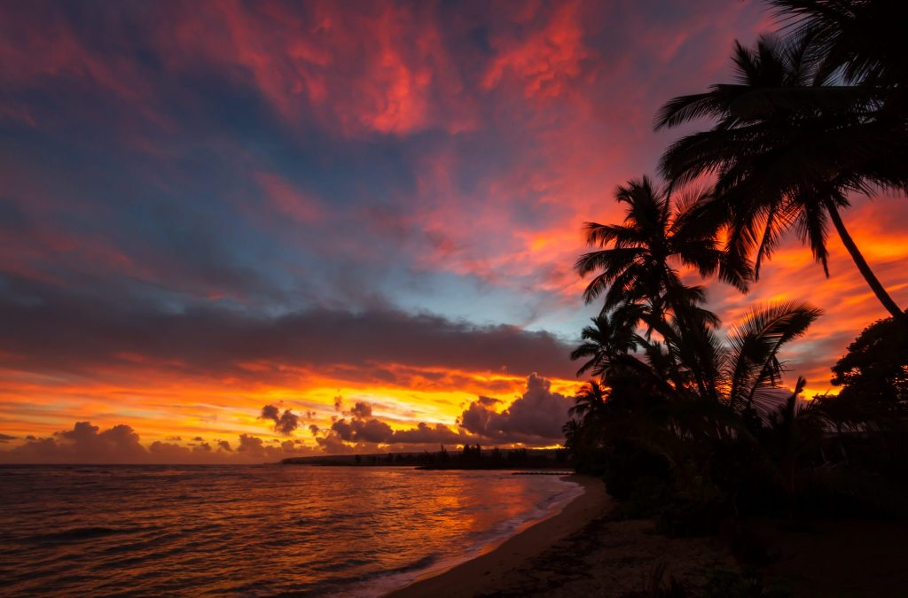 Oahu Beaches: The BEST Beaches In Oahu For Your Visit