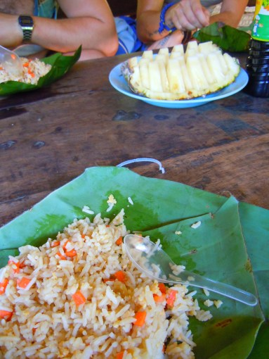 Excursion Review - Chiang Mai TUM Elephant Trekking Care