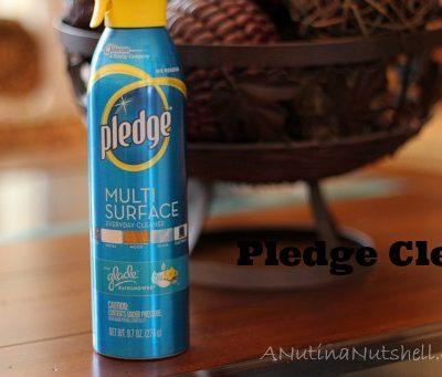 Pledge spray