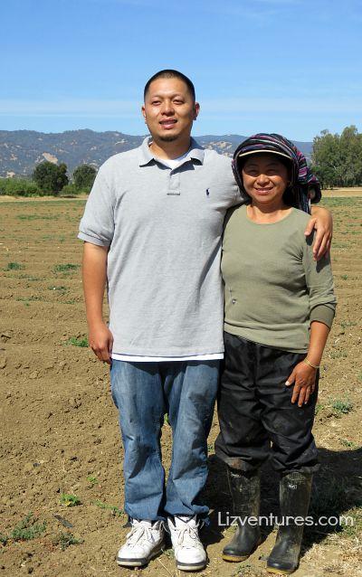 T&Y Strawberry Patch - Woodland, CA