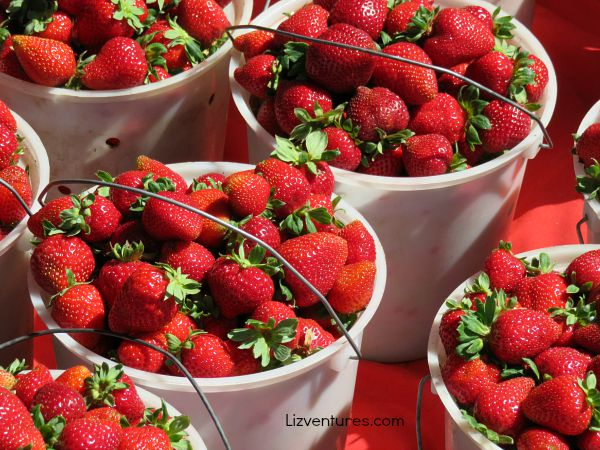pails full of strawberries