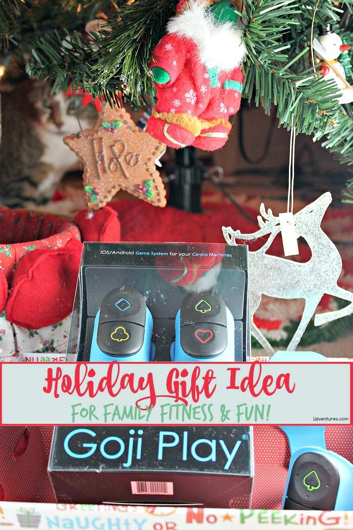 Goji Play - holiday gift idea for family fitness and fun