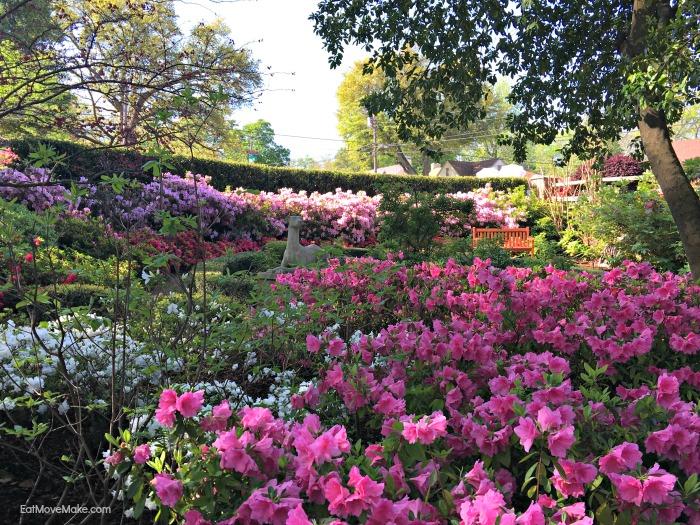 McGuire Gardens on Azalea Trail - Tyler TX
