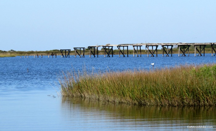 Pea Island National Wildlife Refuge NC