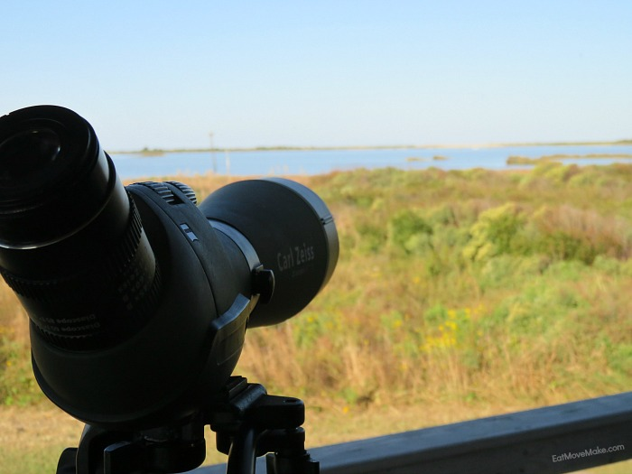 Zeiss scopes at Pea Island national wildlife refuge