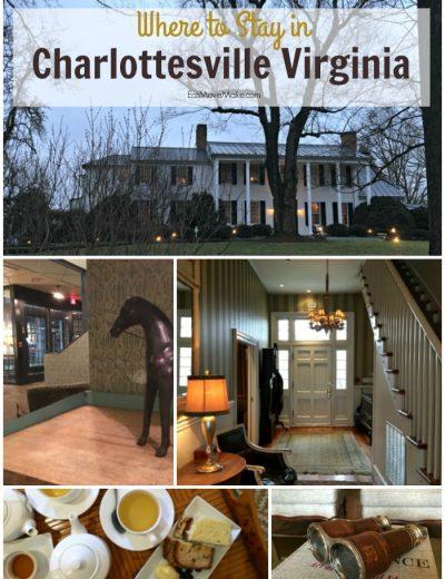 Charlottesville hotels pin