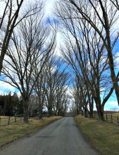 entrance to Ashlawn Highland