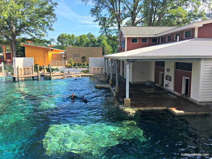Riverbanks Zoo Sea Lion Landing