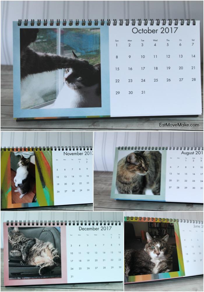 cat-desk-calendar-cvs-photo-gifts