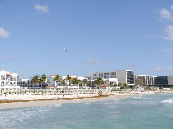 Playa del Carmen shore