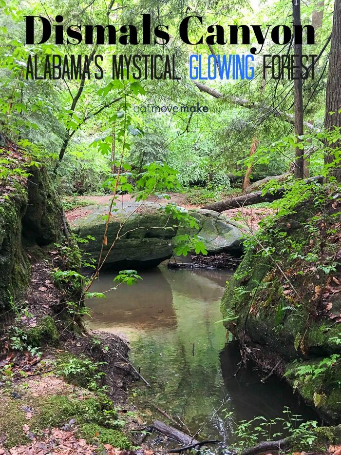 Dismals Canyon  - Alabama's Mystical Glowing Forest