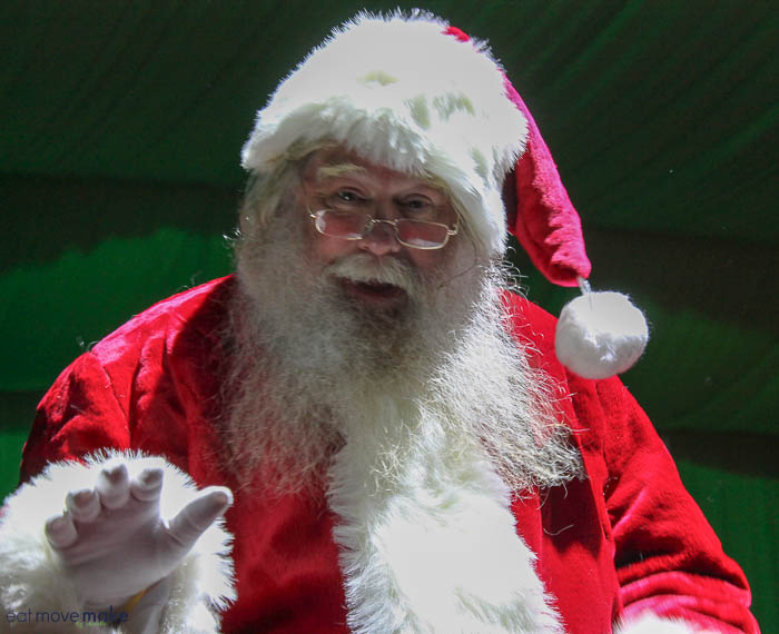 A person wearing a costume, with North Pole Express
