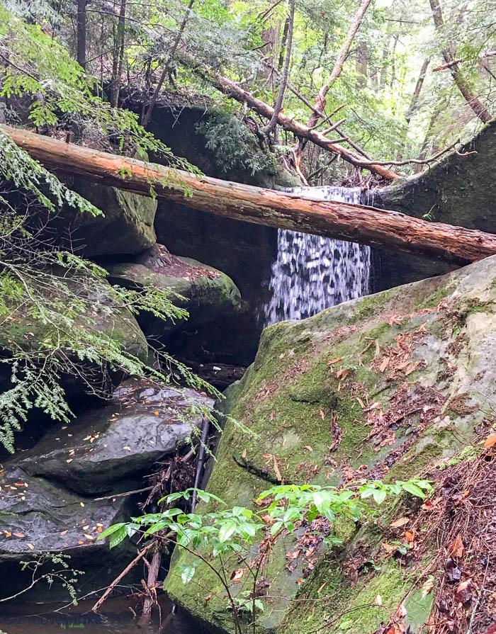 Secret Falls in Dismals Canyon
