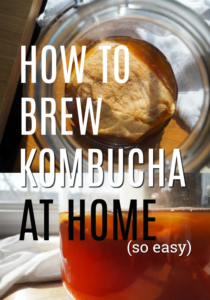 Step-by-step guide How to brew kombucha at home.Buying kombucha at the store can add up quickly if you get hooked on it like I did. Here's how to brew kombucha at home with simple ingredients in an easy, step-by-step format. How to make homemade kombucha drinks for beginners - recipe, scoby, continuous brew, flavors, second ferment and more.