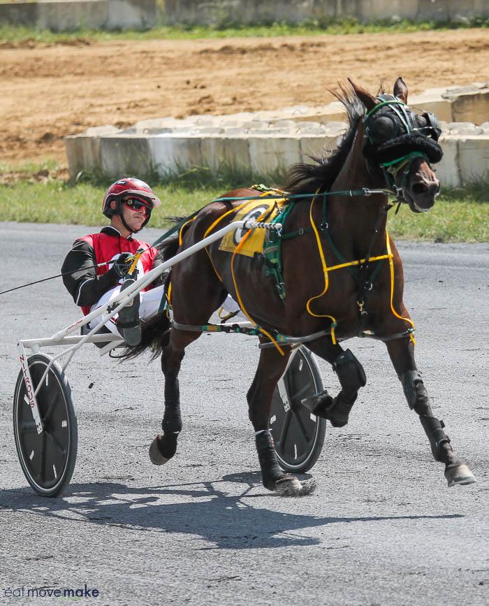 A jockey and horse racing