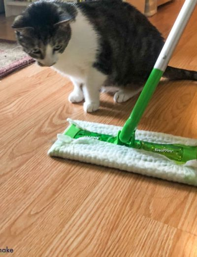 A cat watching a Swiffer sweeper
