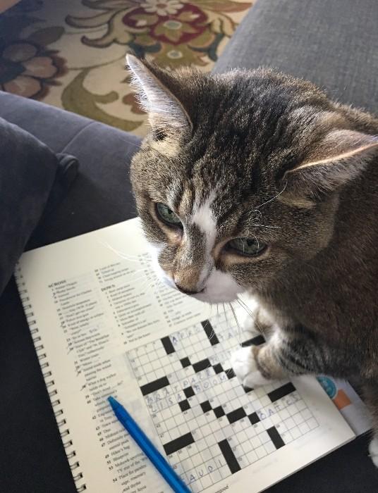 Mony helping with crossword