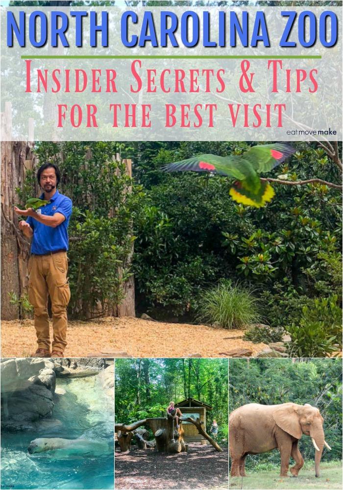 North Carolina Zoo Insider Secrets & Tips for the Best Visit - Asheboro, NC USA