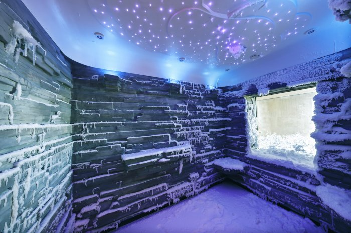 Norwegian Bliss snow room